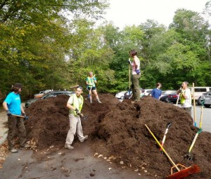Volunteers working hard shoveling mulch.
