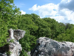 Wolf Rock, Catoctin Mountain Park. Photo credit NPS.