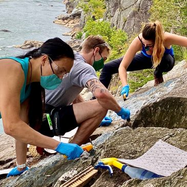 Coming Together: Stewardship and the Climbing Community in the Midst of COVID-19
